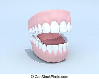 open denture