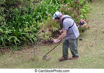 Gardner mowing the grass in the garden.