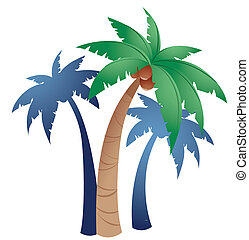 palms - three palms on a white background