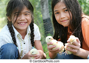 Children holding pet chicks - Two happy girls holding their...