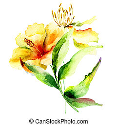 Original Lily flowers, watercolor illustration