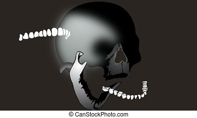 collapsible skull - Animated cartoon - collapsible skull
