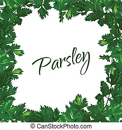 Parsley on a white background Vector green frame of greenery...
