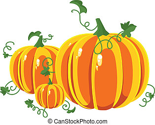 Pumpkin with leaves on a white background. Vector...