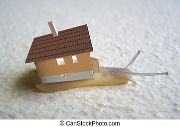 home of the snail - Home of the snail 3d illustration
