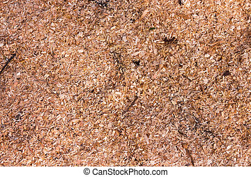 sawdust - a whole bunch of small shavings and sawdust from...