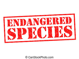 ENDANGERED SPECIES red Rubber Stamp over a white background.