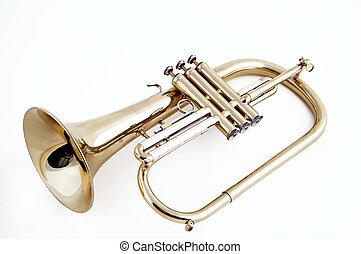 trompete, flugelhorn, isolado, branca