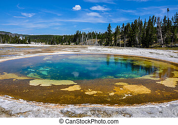 One of the many scenic landscapes of Yellowstone National...
