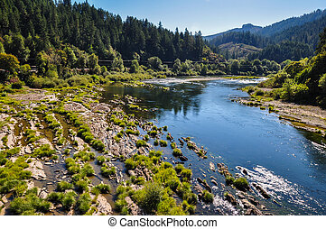River flowing in Oregon, USA.