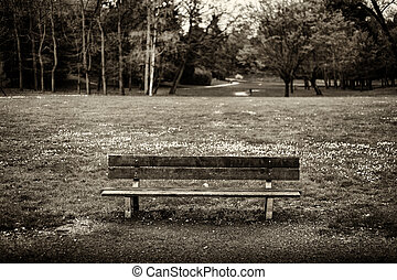 The bench - A bench placed in the Park of Monza