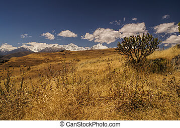 Cordillera Negra in Peru - Panoramic view of the meadows in...