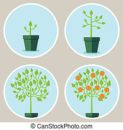 Vector growth concept - infographic in flat style - abstract...