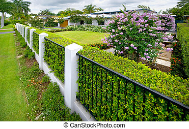Fenceline to house - Fenceline and hedges line the entry to...
