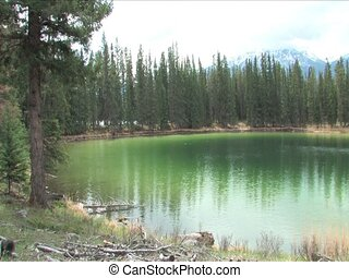 Emerald Lake - Emerald coloured lake in Jasper National Park