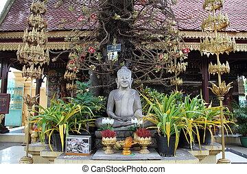 prata, pagode, phnom, penh, cambodia