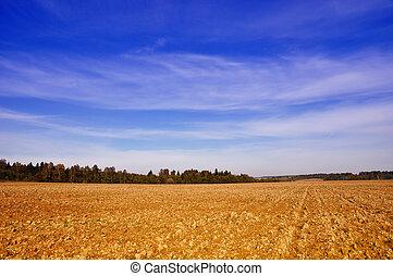 Tillage - Rural landscape - farming field near forest