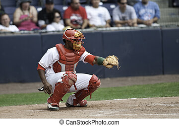 Basaball Catcher caught the ball - The pitch is across the...