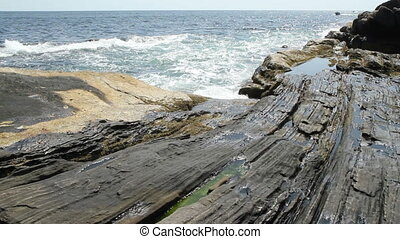 Rocky Shore Maine USA  - Rocky Coastline Maine USA