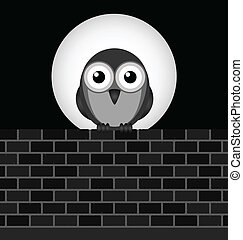 Night Owl - Monochrome night owl perched on brick wall