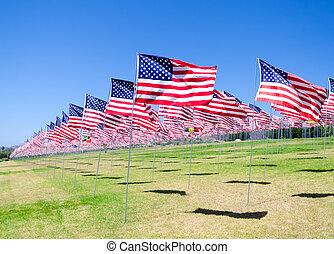 American flags on a field - American flags background on a...
