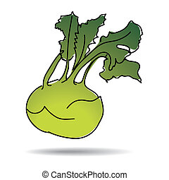 Freehand kohlrabi - Freehand drawing kohlrabi icon - vector...