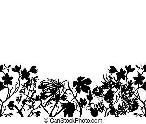 łąki, roślina, sylwetka