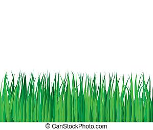 summer landscape - Vector illustration grass background for...
