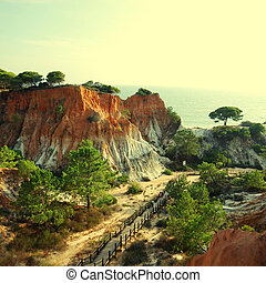 Algarve, Portugal - landscape with orange cliffs and pine...