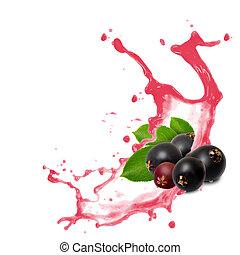 Elderberry splash - Photo of elderberry with leaf and splash...
