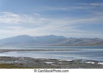 Coast of mountain lake