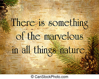 Inspirational quote on nature by Aristotle, on a grunge...