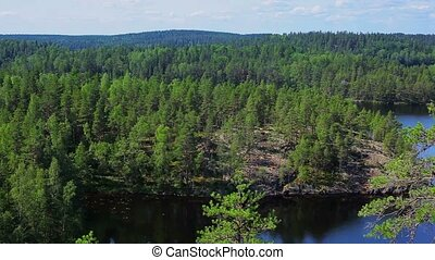 Repovesi national park. - Repovesi national park view in...