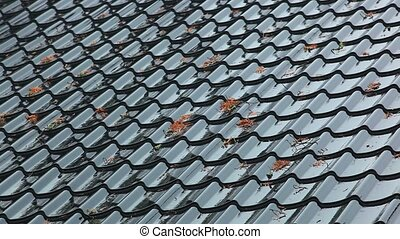 Roof. - Rain on roof.