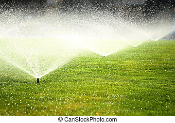 garden sprinkler on the green lawn - garden sprinkler on a...