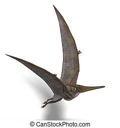 Dinosaur Pteranodon - flying dinosuar Pteranodon. 3D render...
