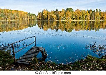 autunno, foresta, lago, tranquillo