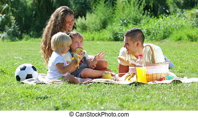 family with picnic - Vacation day of young family with...