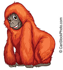 Orangutan - Illustration of a single orangutan