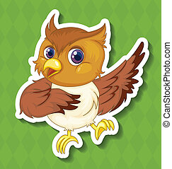 Owlet - Illustration of a closeup owlet