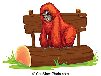 Orangutan - Illustration of an orangutan on a log