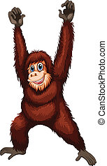 Orangutan - Illustration of a closeup orangutan