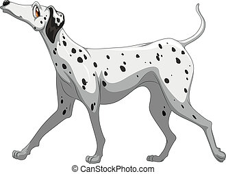 Dog - Illustration of a single dalmatian
