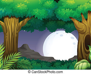Night time - Illustration of a forest at nighttime