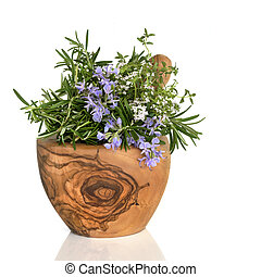 Rosemary and Thyme Herbs - Rosemary and thyme herbs in...