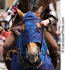 Medieval horse - A blue-clad medieval style horse and rider...