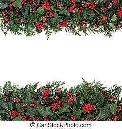 Winter Floral Border - Winter and christmas floral...