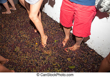 man and woman crushes the grapes with their feet bucket to...