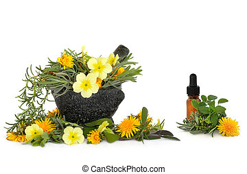 Wild Flower and Herb Therapy