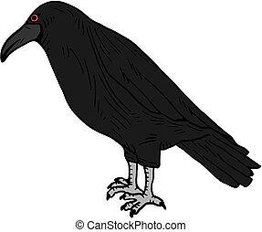 Icon raven - Creative design of icon raven
